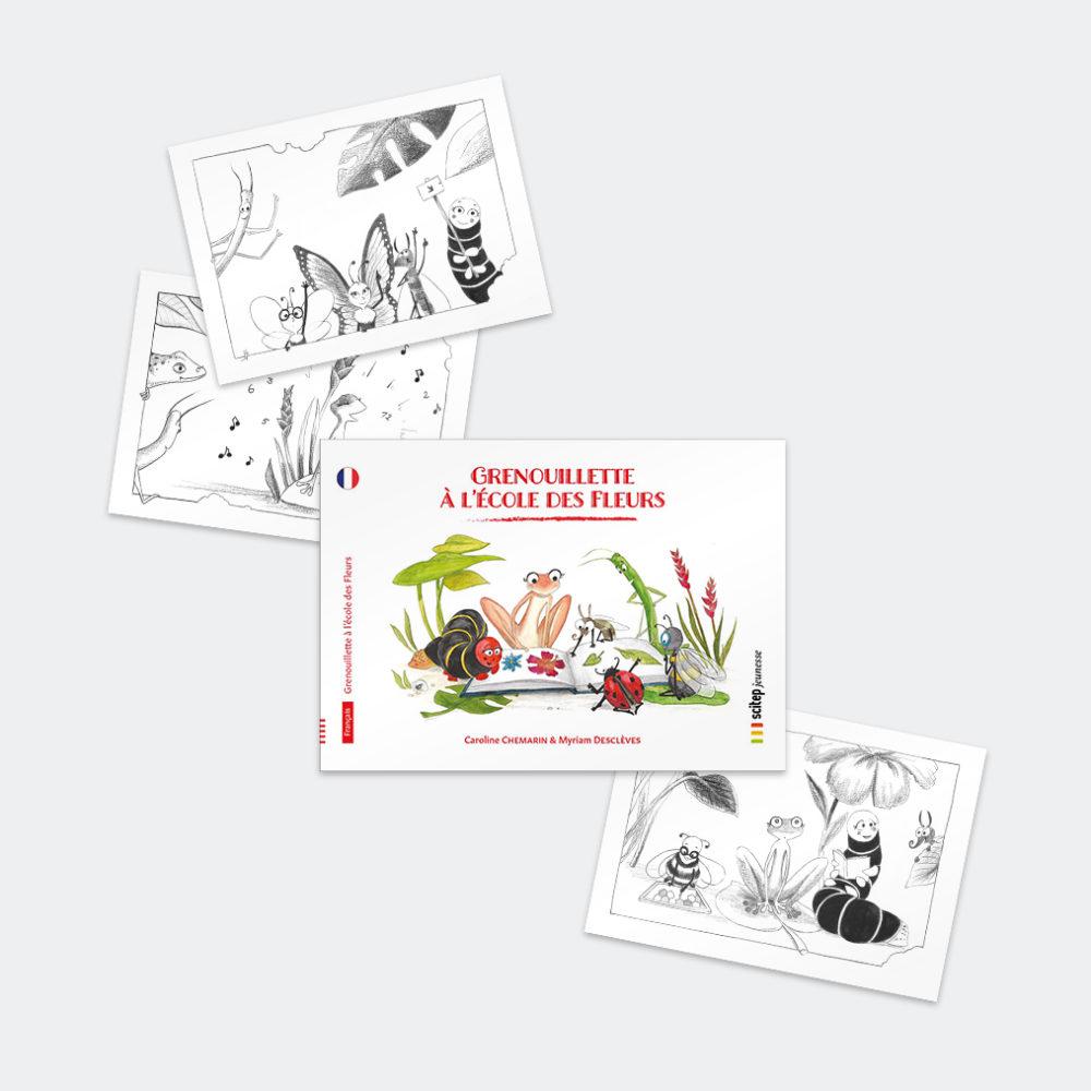 grenouillette-livre-illustration